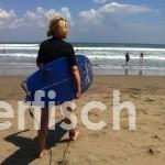 stephanie surfen